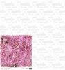 Dark Pink Foliage 15 x 15 cm