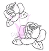 Roses   setje van 2
