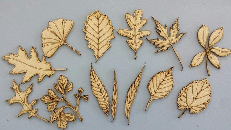 Chipboard Bloemen, bladeren